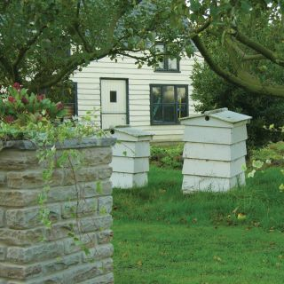 Global Stone Old Rectory York Green Walling (225 Per Pack) 270 x 100 x 55 - 75mm