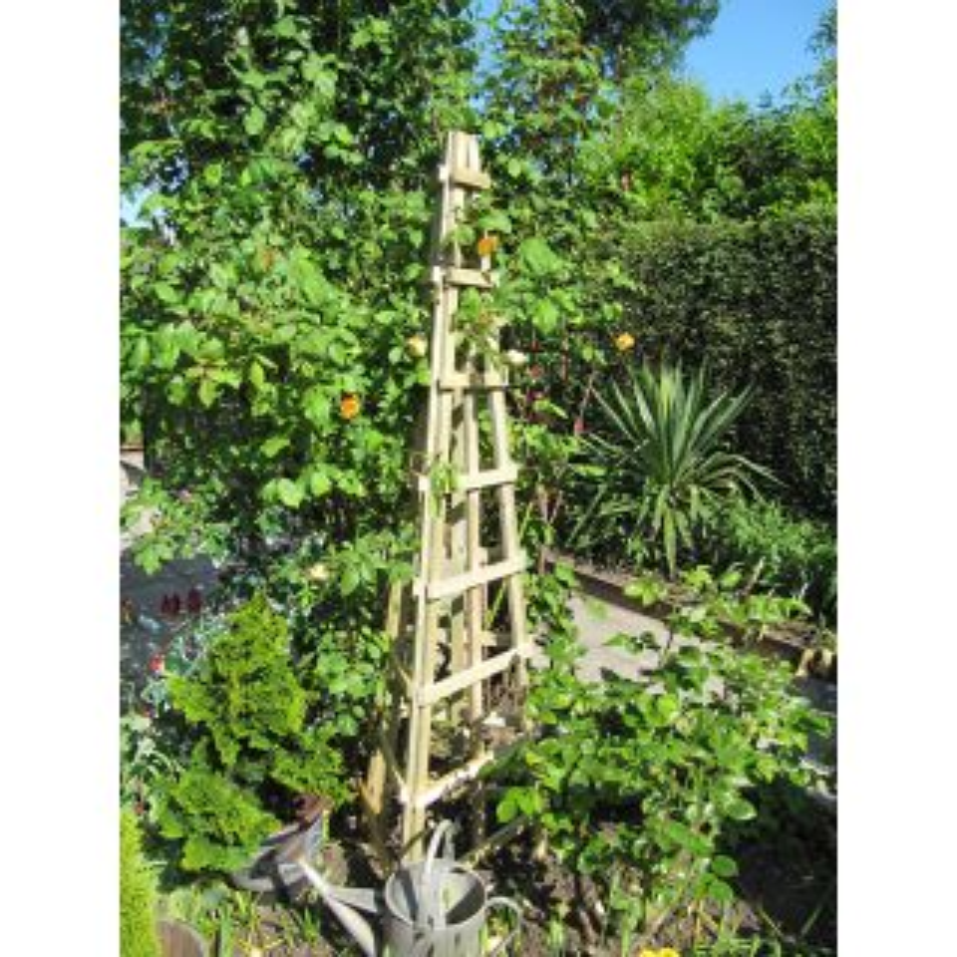 Trellis Obelisk 1798 x 531 x 531mm